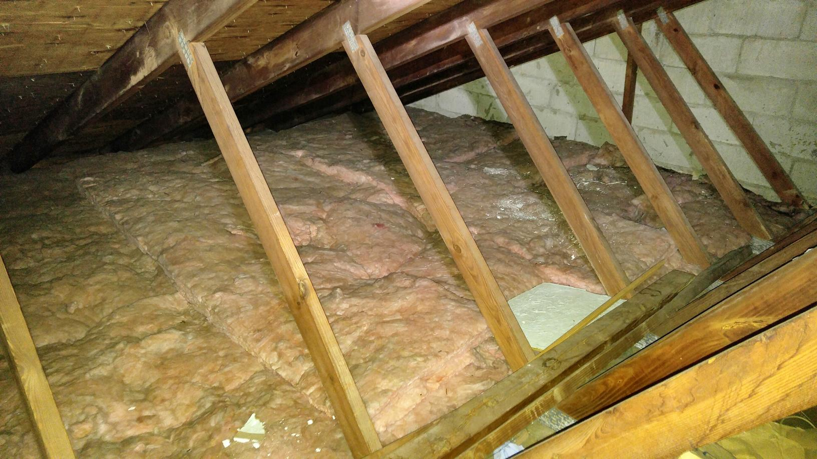 TAP insulation installed after bats make mess in attic - Beachwood bat removal and replacement insulation - Before Photo