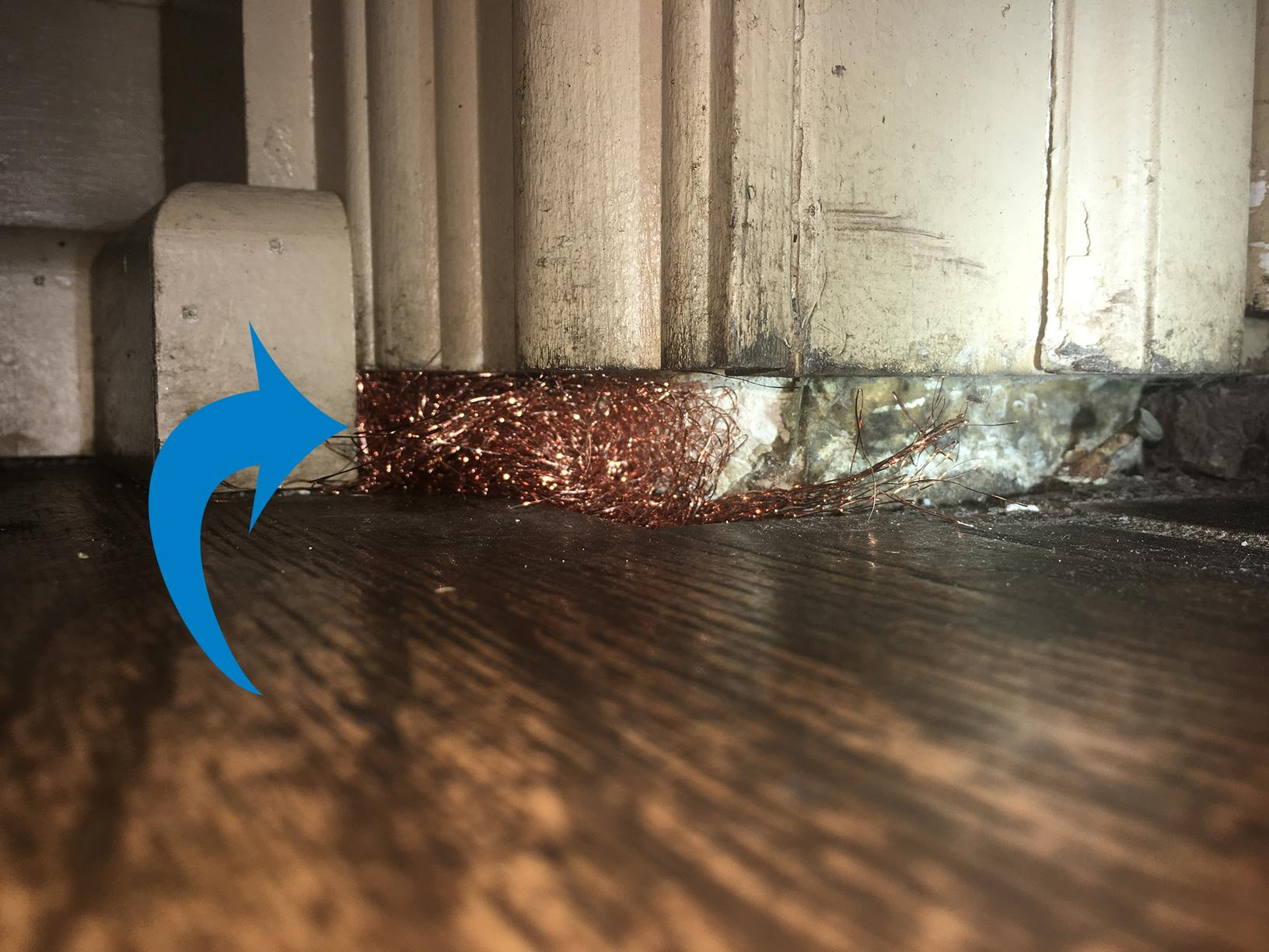 Mice find easy entry into Keyport commercial restaurant - After Photo