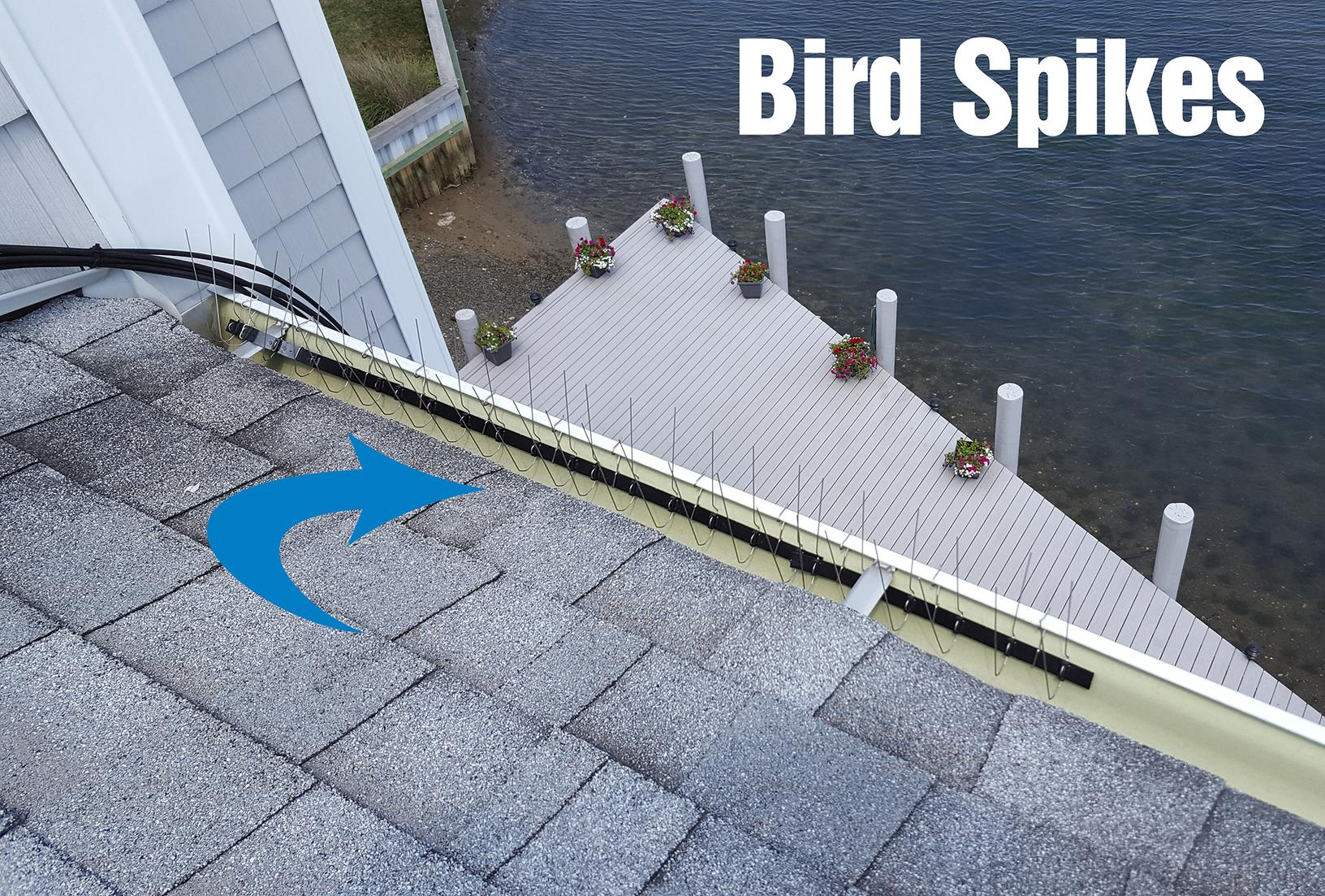 Beach Haven, NJ home gets bird spikes on gutters - After Photo