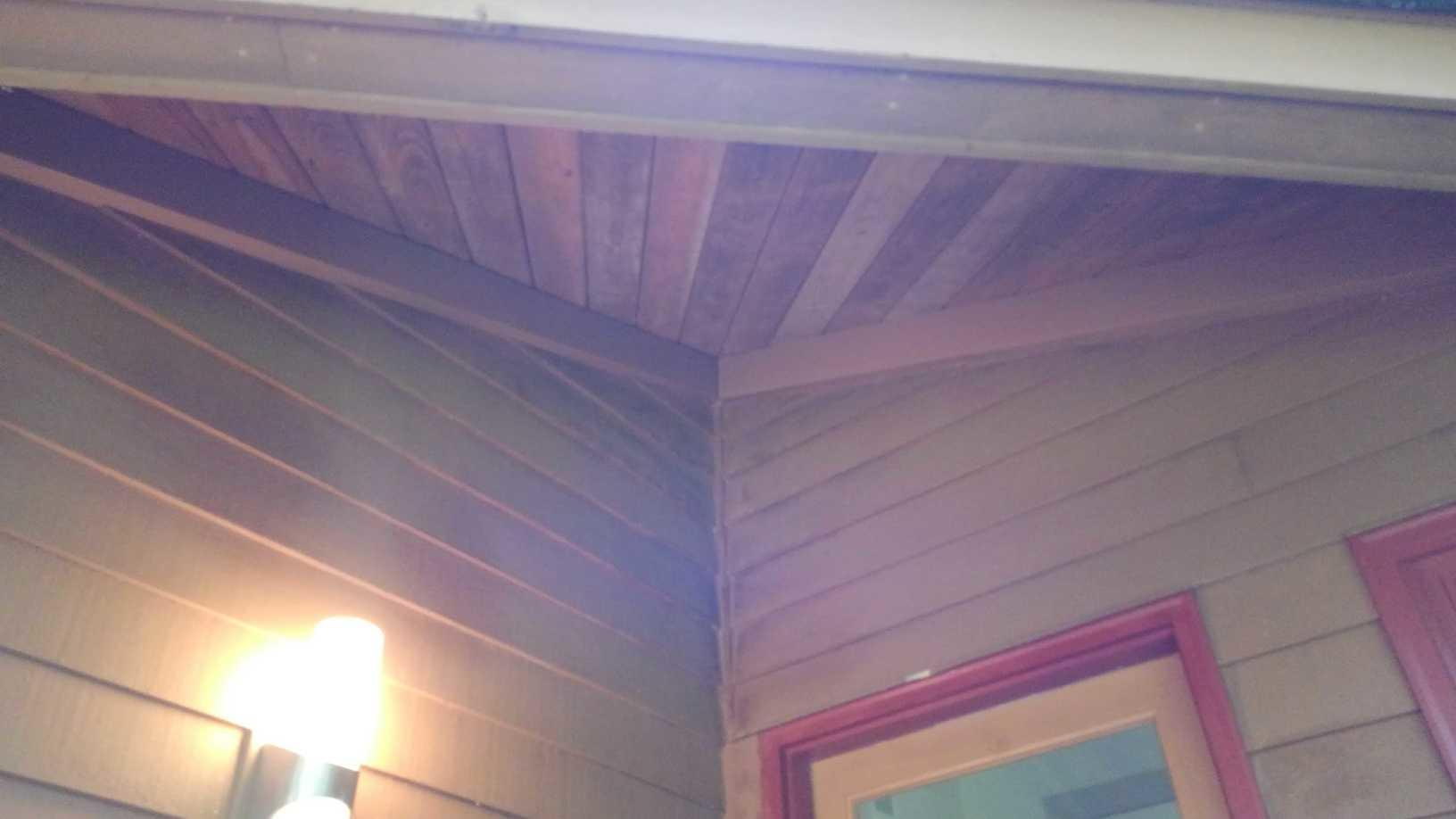 Bat's find easy access to Princeton, NJ home - After Photo