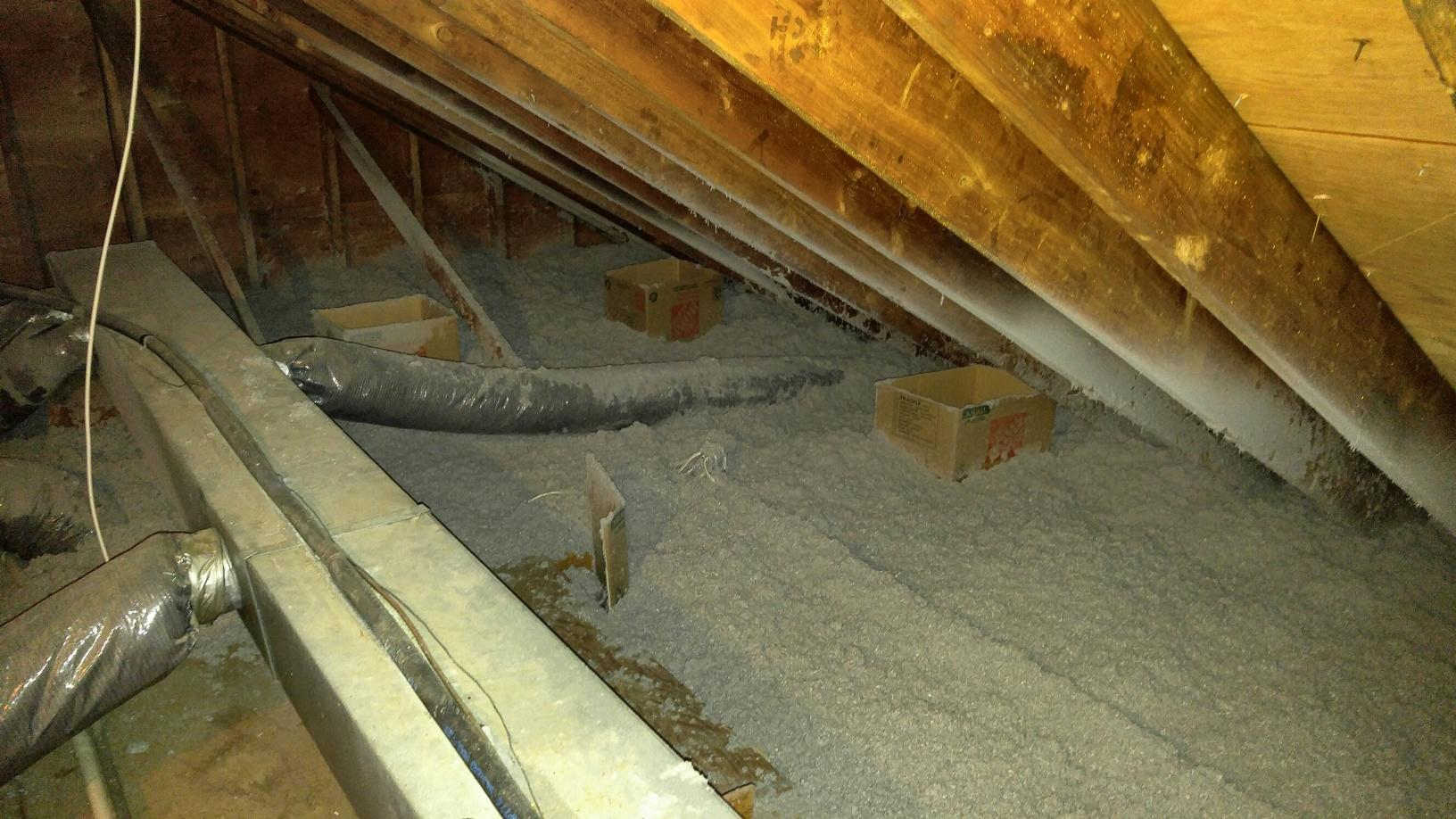 Bats soil attic insulation in Homdel, NJ - After Photo