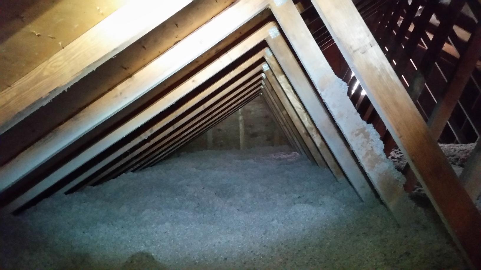 TAP installed in Toms River after mice infest and soil attic | Toms River, NJ Pest Control - After Photo