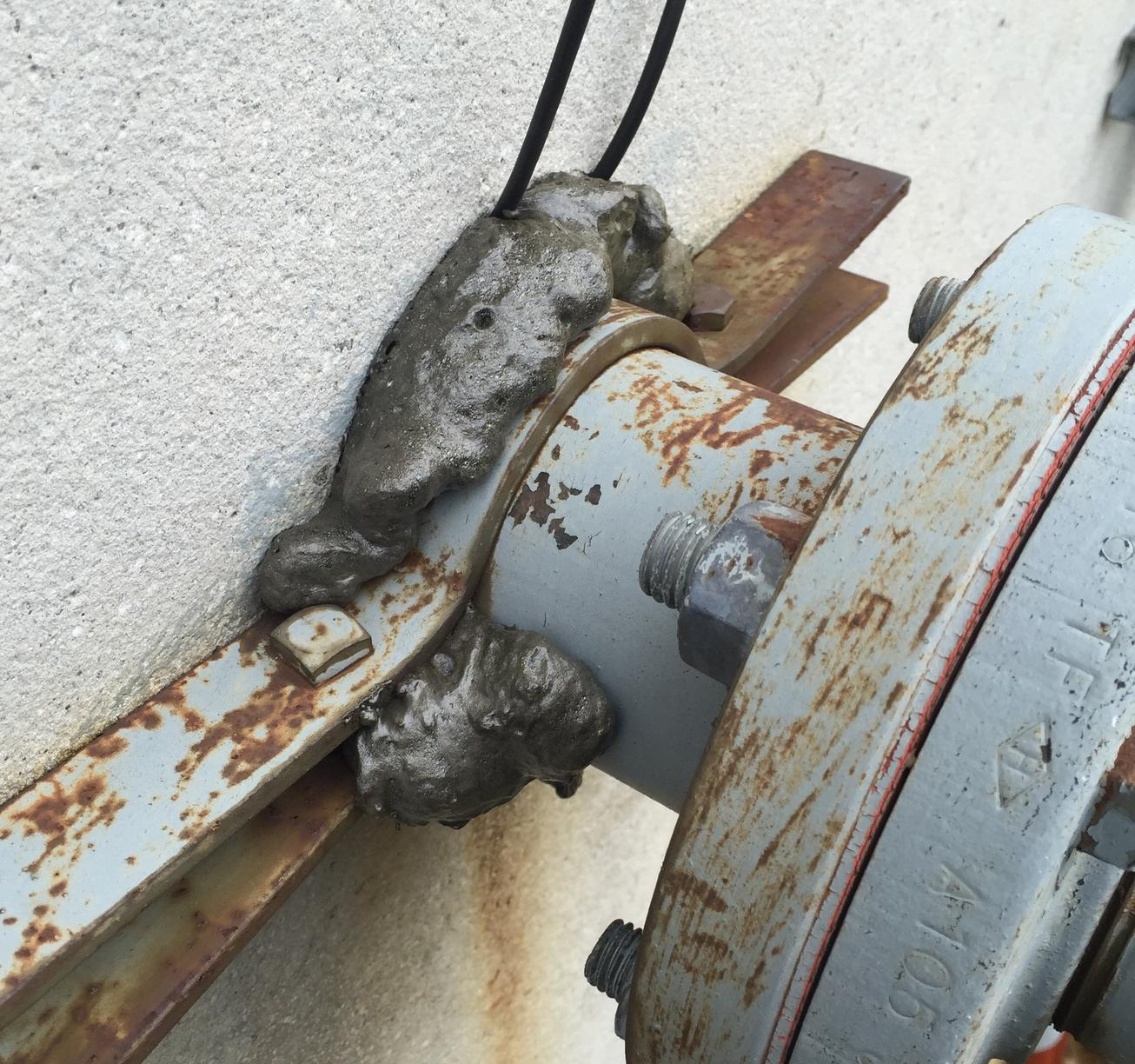 Mice in Monroe, NJ Commercial Facility - After Photo