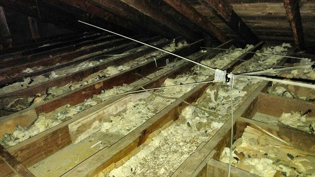 Raccoons wreak havoc in New Egypt attic - Before Photo