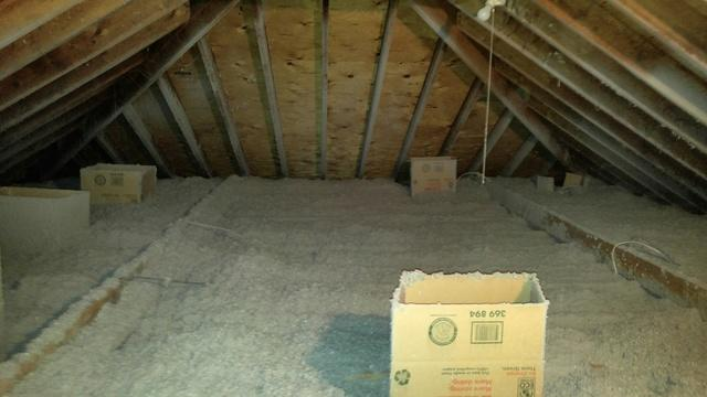 Bats make mess in Dayton attic