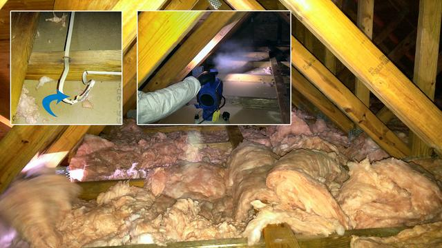 Raccoons make mess and we clean it up and install new insulation in Sayreville