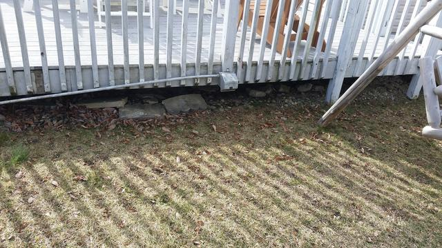 Skunks find easy access under deck in East Windsor