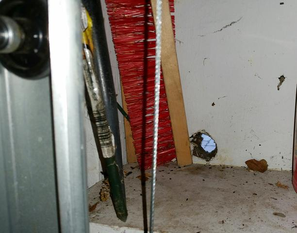 Mice find multiple entry points in Manasquan, NJ home