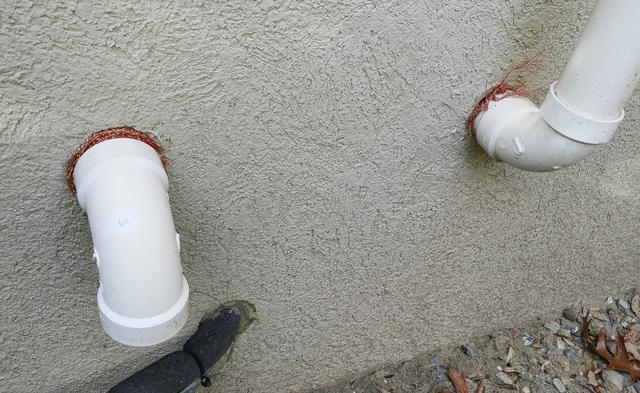 Rodents invade Jackson, NJ home