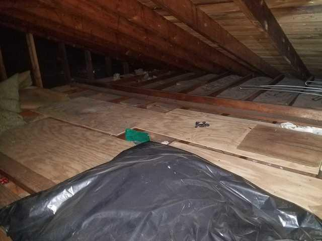 Attic Insulation Installed after Wildlife Intrusion in Red Bank, NJ