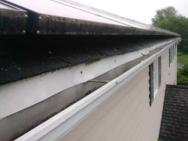 Pigeon Feces on Solar Panels in Wall Township, NJ
