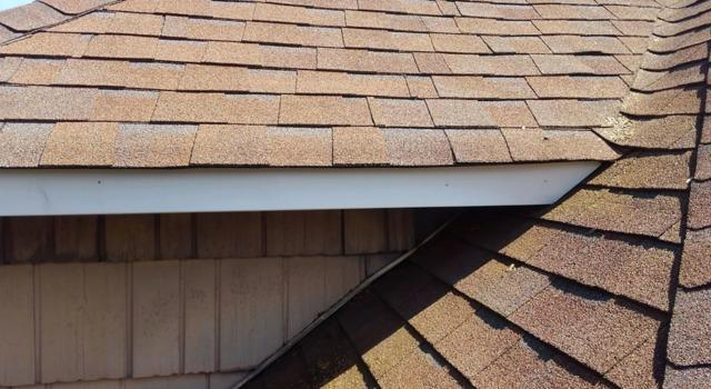 Repairing Raccoon Damage to Home in Freehold, NJ