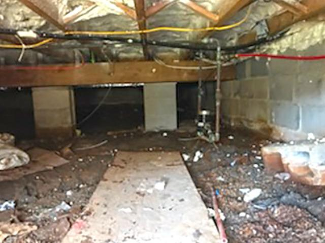 Crawl Space Goes From from Costly to Clean in Freehold, NJ