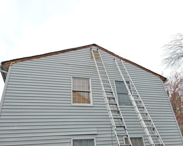 Repairing Extensive Squirrel Damage in Oakhurst, NJ