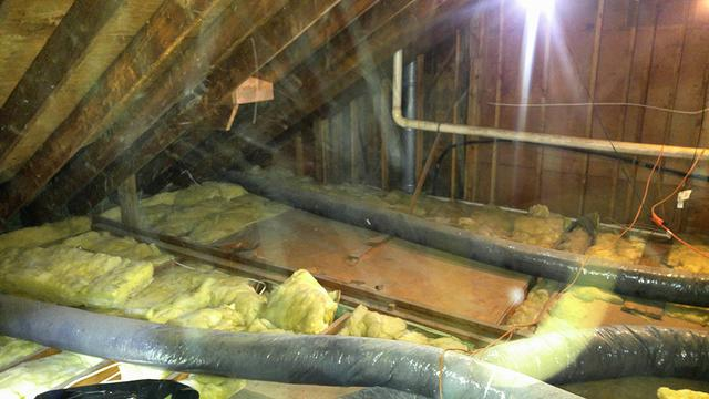 Bats soil attic insulation in Homdel, NJ - Before Photo