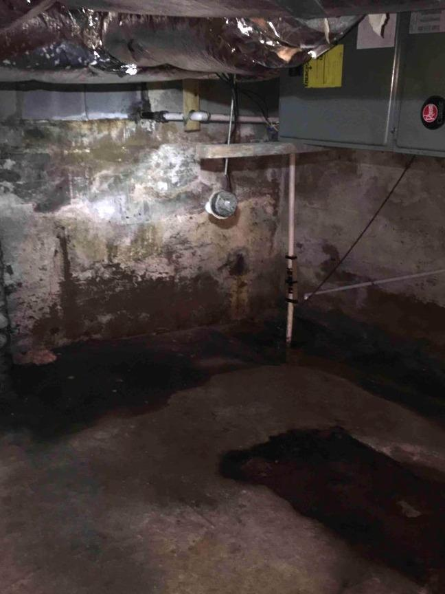 Installing a Sump Pump in Damascus, VA - Before Photo