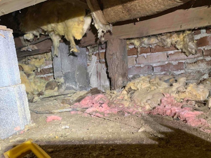 Crawlspace Repair Near Ceres, VA - Before Photo