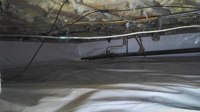 Our CleanSpace Liner Transforms a Johnson City, TN Crawlspace