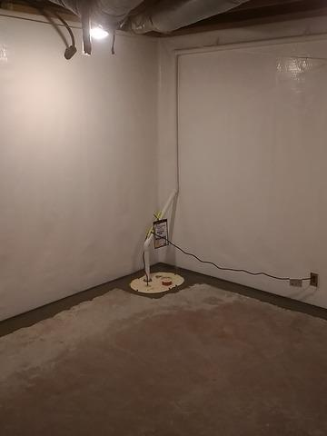CleanSpace Wall Liner and Sump Pump Installation in Huntsville, TN