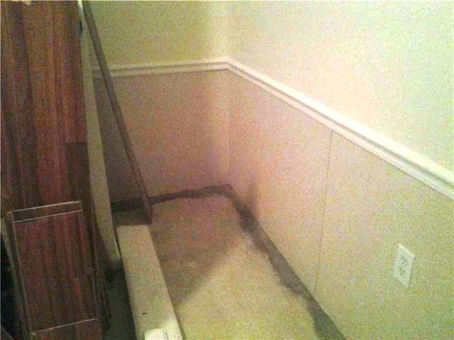 New Basement Wall Panels in Staten Island, NY - After Photo