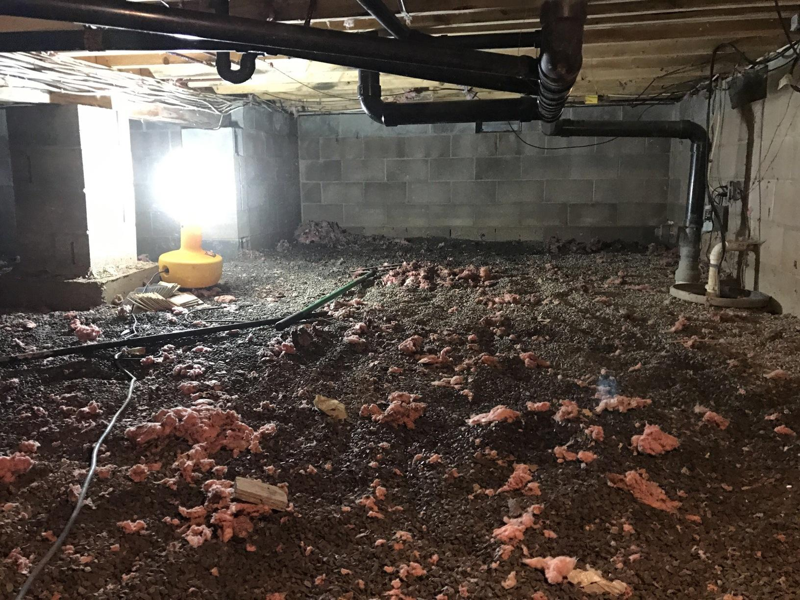 Another Crawlspace Transformation in East Stroudsburg, PA - Before Photo