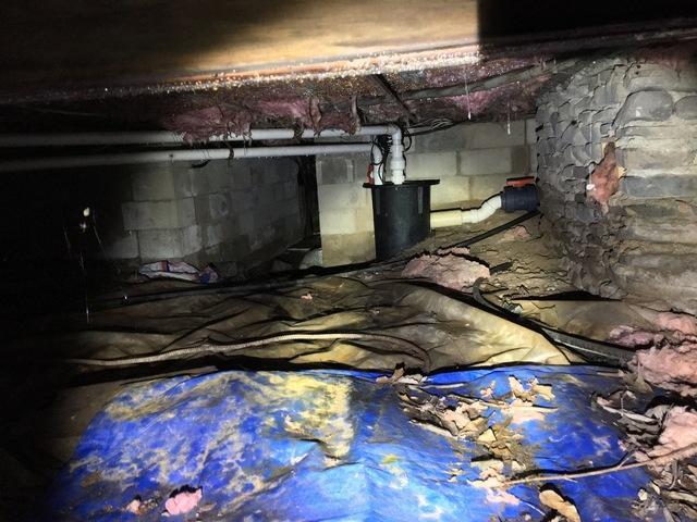 Crawlspace Repair- Greentown, Pa