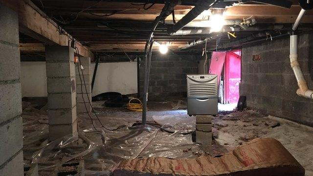 Immaculate Crawlspace Transformation in Palmerton, Pa