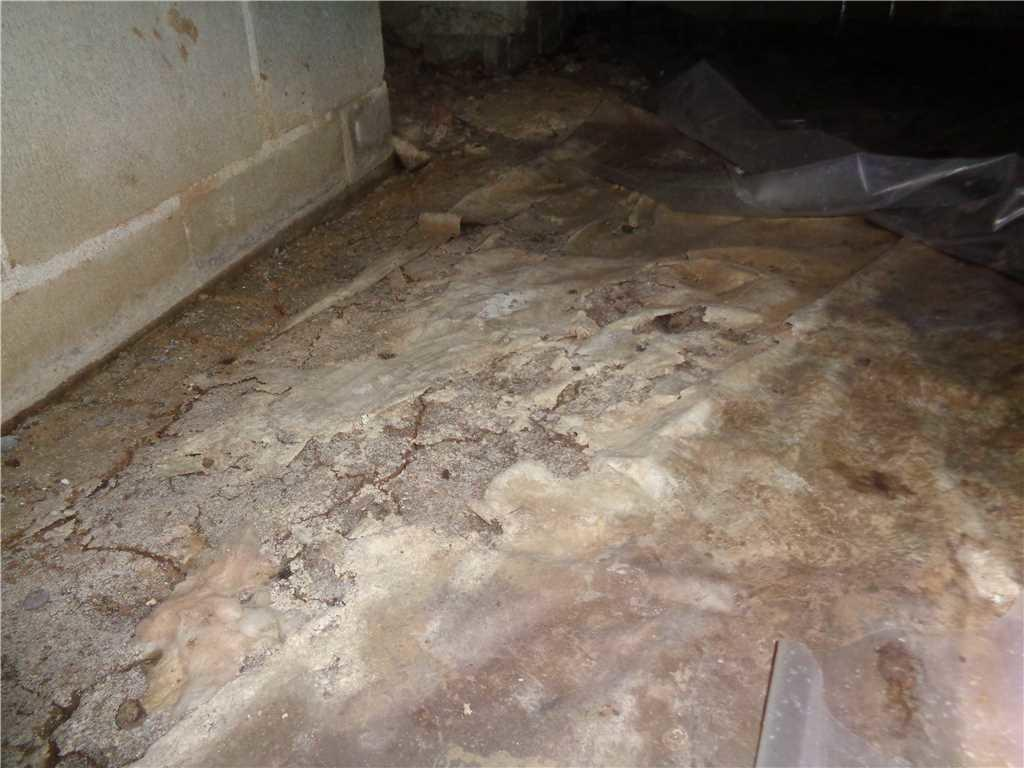 Dirty Crawl Space in Horn Lake, MS - Before Photo