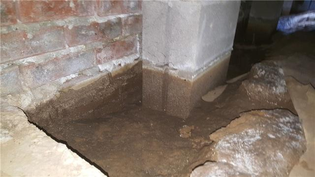 Dirty Crawl Space in Alamo, TN - Before Photo