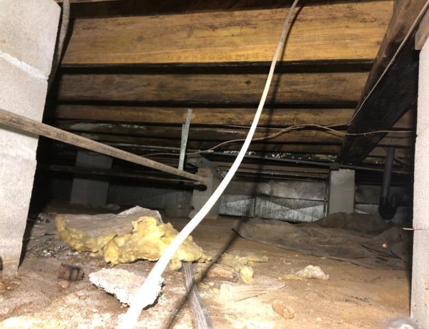 Full Crawlspace Encapsulation in Ashland Mississippi - Before Photo