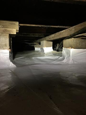 Mold Infested Crawl Space in Stuttgart, Arkansas
