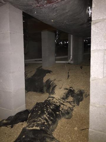 Insulating a Crawl Space in Jordan, Arkansas
