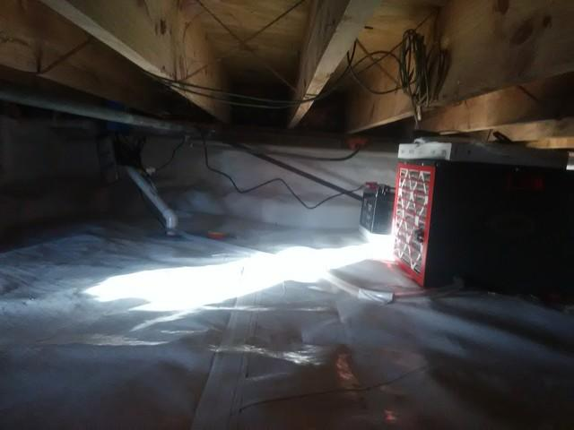 Mold Infested Crawl Space in Walnut Ridge, Arkansas