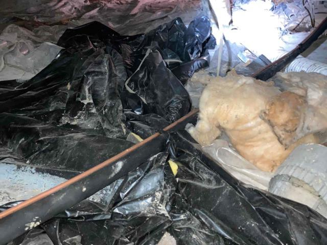 Crawl Space Cleanup in Grayson, Ky