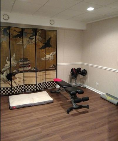 Stunning Exercise Room Transformation in Lake Forest, IL