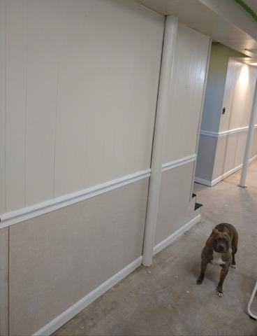 Wall Restoration to Fix Water Damage in Milwaukee, WI