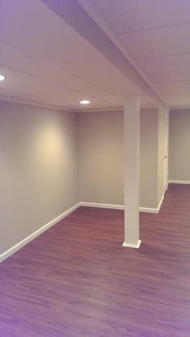 Renovated Basement in Crystal Lake, IL