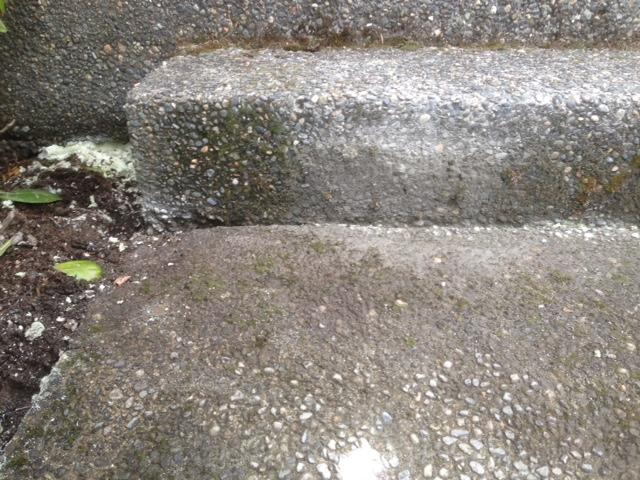 Concrete Lifting & Leveling in Bothell, WA - After Photo