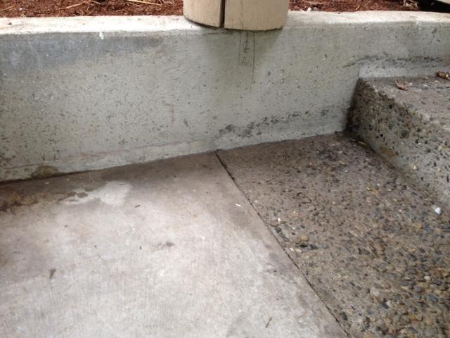 Polylevel Injection on Steps in Redmond, WA - Before Photo