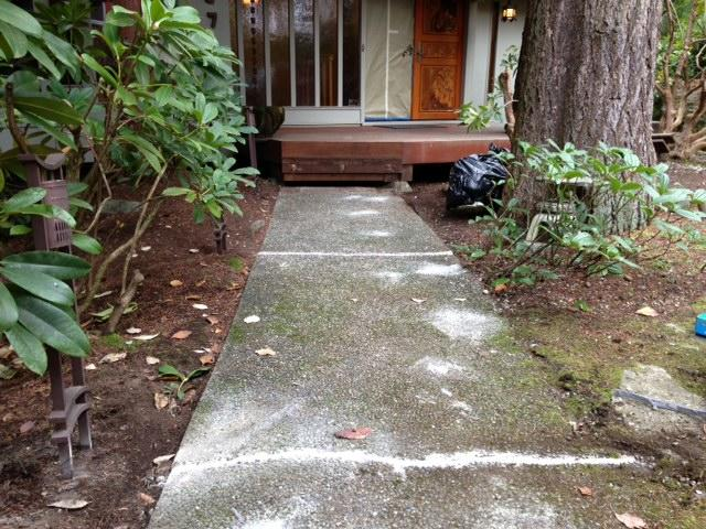 Concrete Lifting & Leveling with PolyLevel in Bellevue, WA
