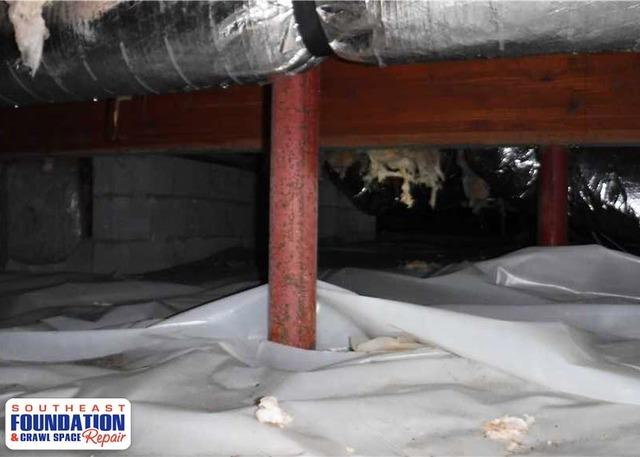 Crawl Space Clean Up in Havelock, NC