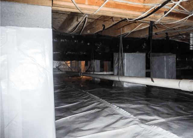 Getting Rid of Mold with CleanSpace in Nakina, NC