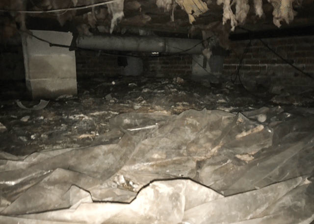 Cleaning Up a Mess of a Crawl Space in McFarlan, NC