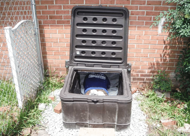 Transform an Old Door to a Turtl in Little Rock, SC