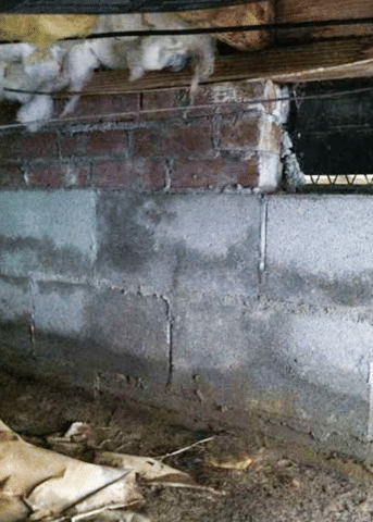 Crawl Space Clean Up in Cordova, NC