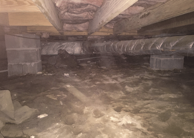Fixing a Smelly Crawl Space in Washington, NC