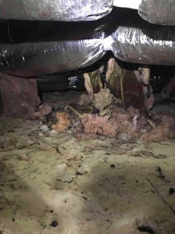 Mold, Wood rot, and Moisture Concerns in a Crawlspace in Jackson Springs, NC