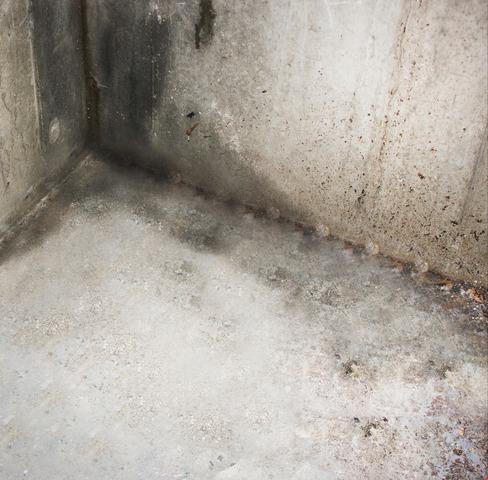 Basement Waterproofing in Freedom, New Hampshire