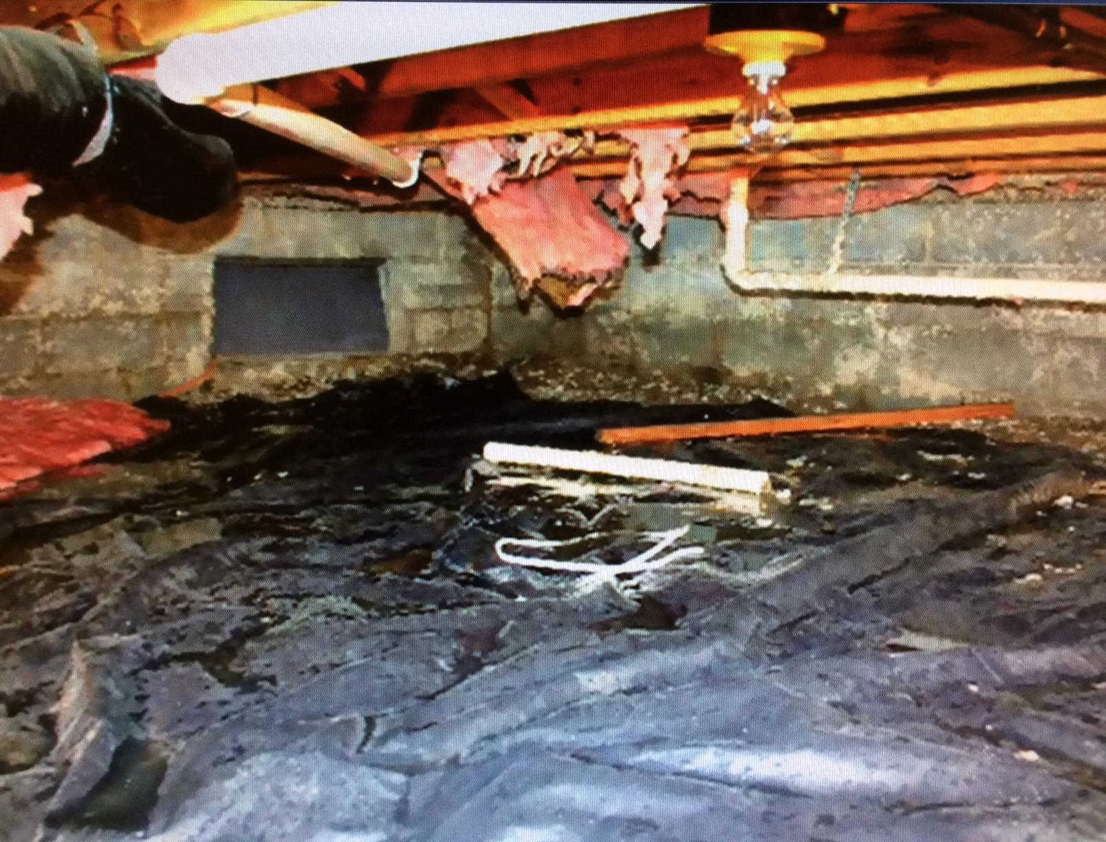 Crawlspace Encapsulation in High Shoals, NC Before & After - Before Photo