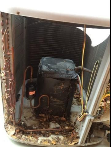 Outdoor Unit Cleaning